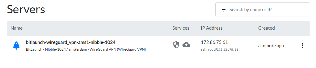 The launched WireGuard server, complete with IP address